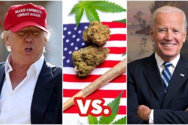 Cannabis en la campaña electoral de EEUU 2020