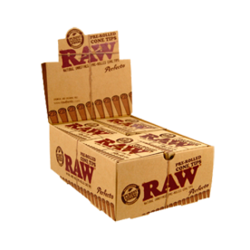 Cone Perfect Raw Filter Box pre-rolled (21)